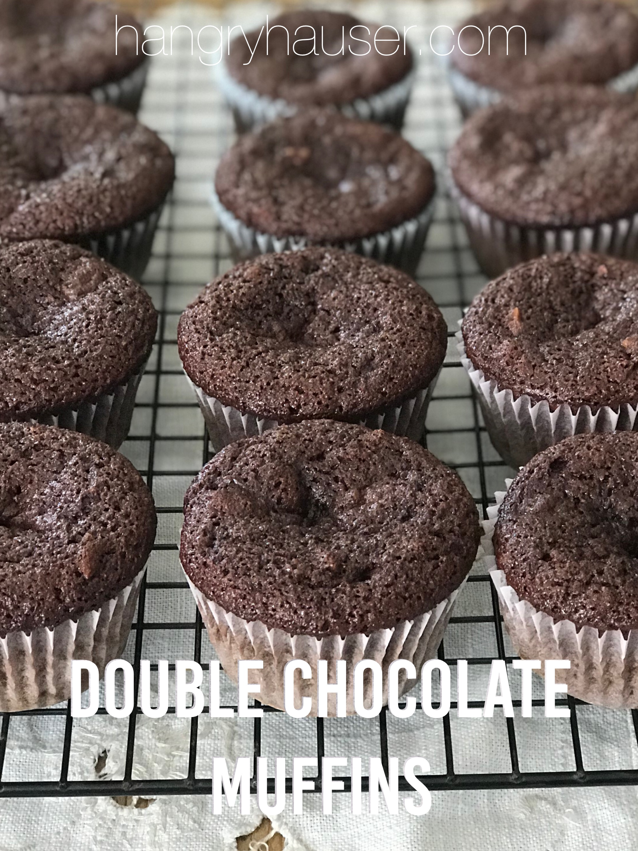 double chocolate muffins pinterest